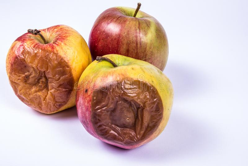 Ruttet äpple på en vit bakgrund royaltyfria foton