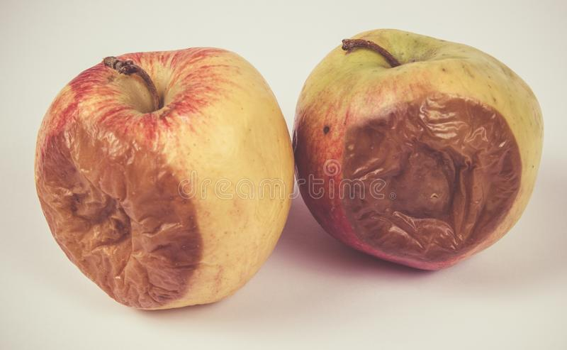 Ruttet äpple på en vit bakgrund arkivbild