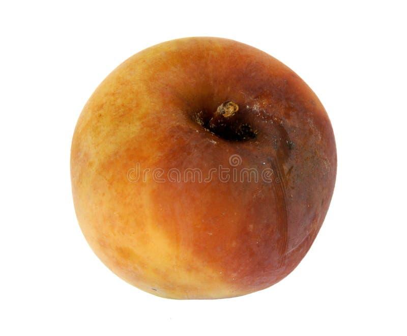 Ruttet äpple på vit royaltyfria bilder