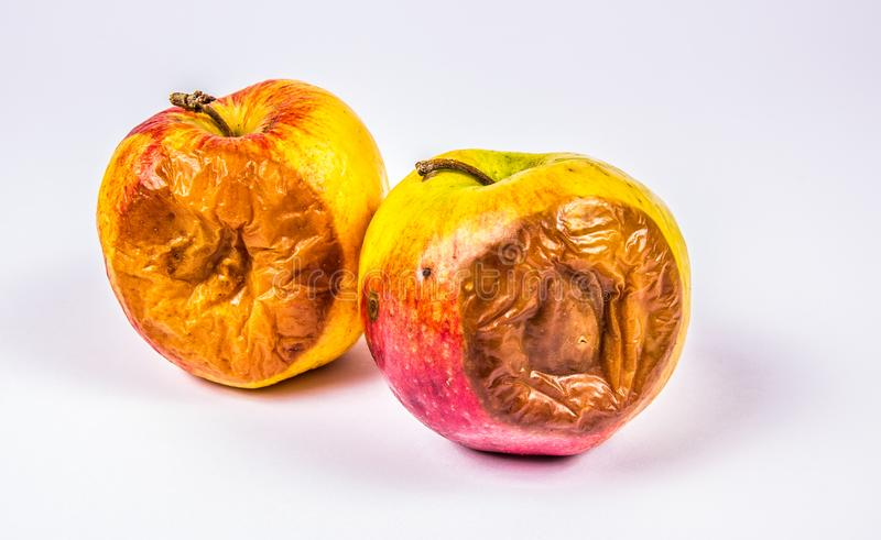 Ruttet äpple som isoleras på en vit bakgrund royaltyfri fotografi