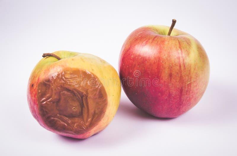 Ruttet äpple som isoleras på en vit bakgrund royaltyfria foton