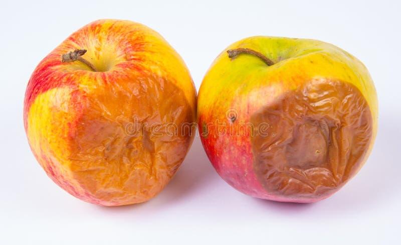 Ruttet äpple som isoleras på en vit bakgrund royaltyfri foto