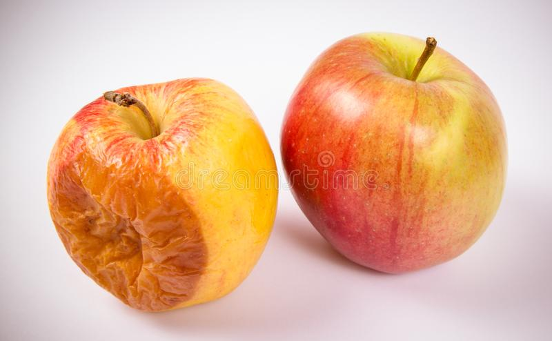 Ruttet äpple som isoleras på en vit bakgrund arkivfoton