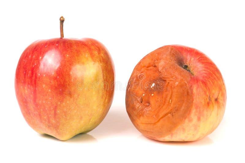 Ruttet och bra äpple som isoleras på vit bakgrund arkivbild
