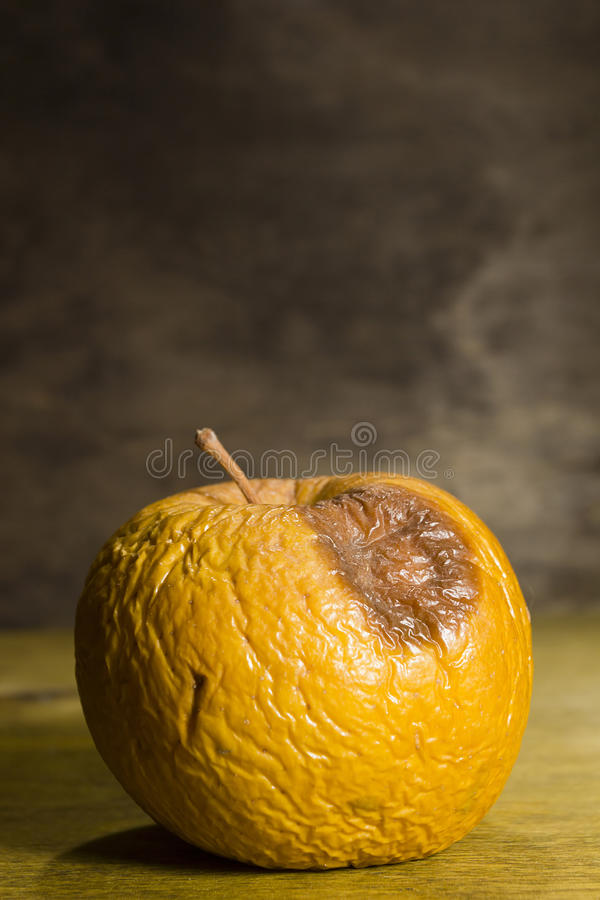 Ruttet rynkigt äpple royaltyfri fotografi