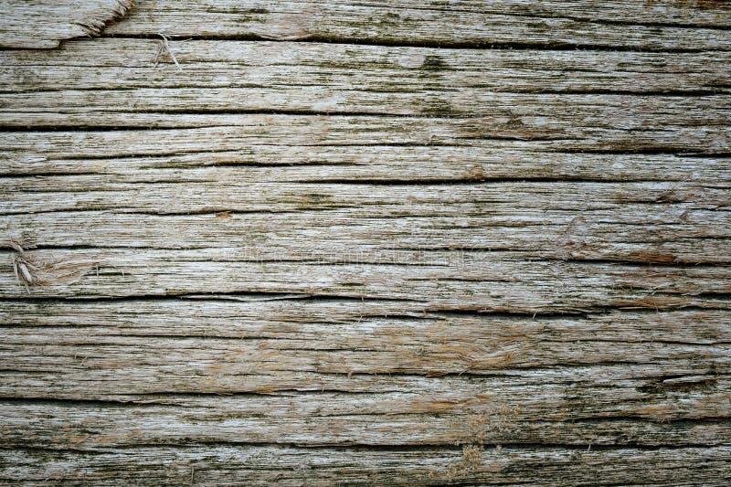 ruttet trä för bakgrund royaltyfria bilder
