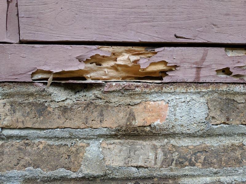 Ruttet trä på tegelstenväggen arkivfoton