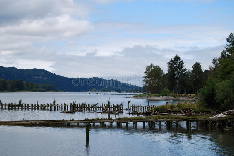 Ruttna Pier Pilings på den Columbia River Oregon-Washington gränsen royaltyfria bilder