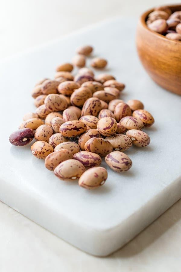 Ruw Droog Pinto Beans op Marmeren Raad/Nierbonen royalty-vrije stock afbeelding