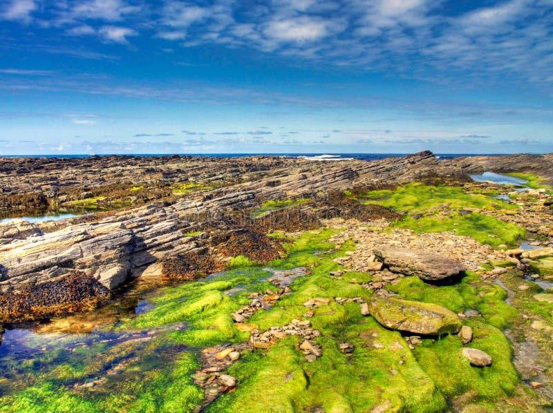 Ruw Schots landschap in strenge weersomstandigheden royalty-vrije stock fotografie