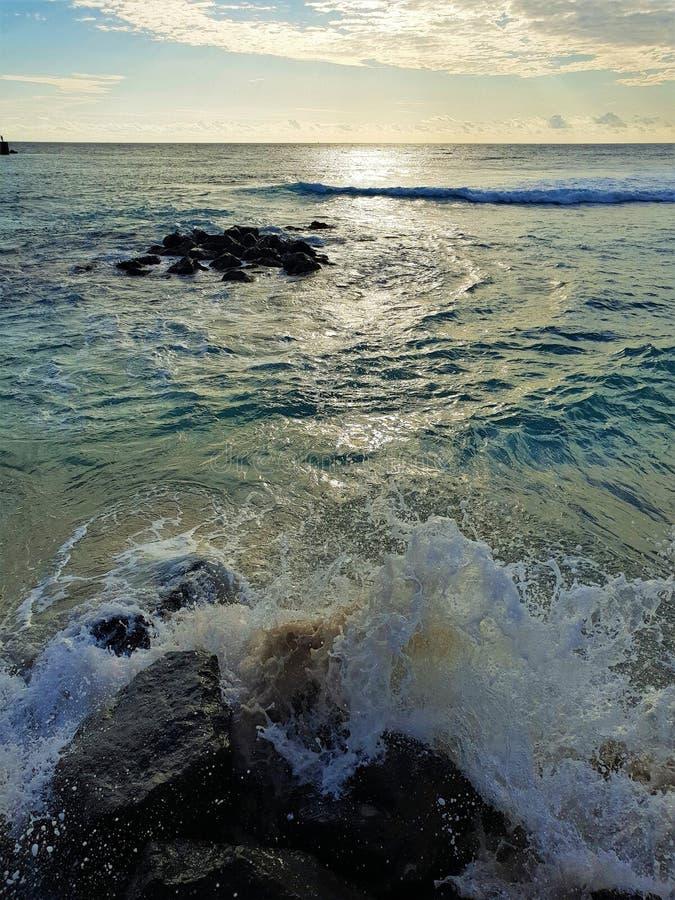 Ruw strand op het eiland van Mauritius stock foto's