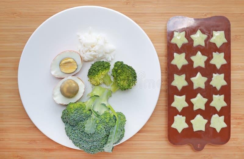 Ruw van de broccoli van het babyvoedsel, ei en rijst in witte plaat en fijngestampt babyvoedsel in container voor het bevriezen o royalty-vrije stock afbeeldingen