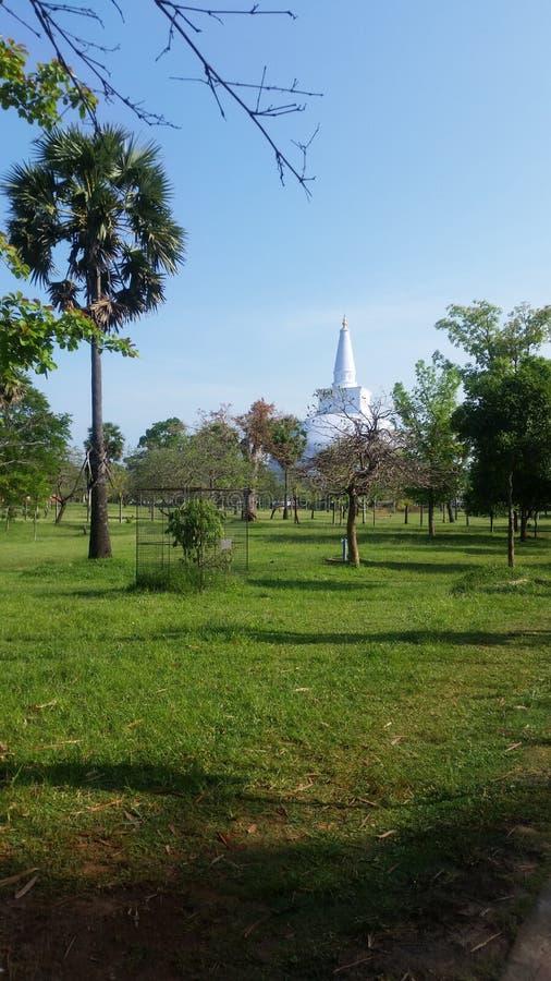 Ruwanwelisaya佛教stupa,阿努拉德普勒,斯里兰卡 库存照片