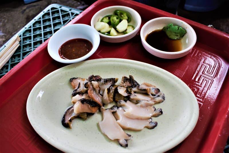 Ruwe abalone, overzeese slak op Jeju, Korea stock afbeeldingen