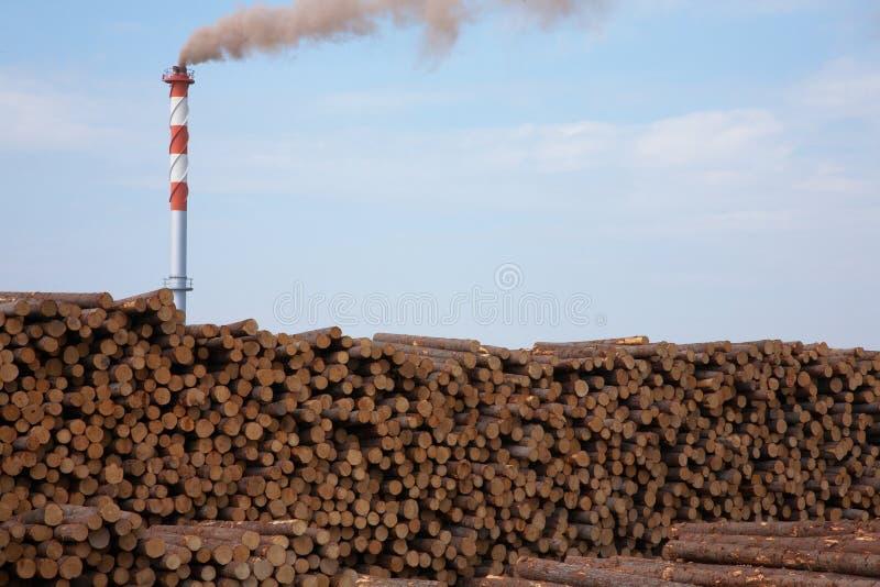 Ruwe boomstammen en een molenpijp stock foto's