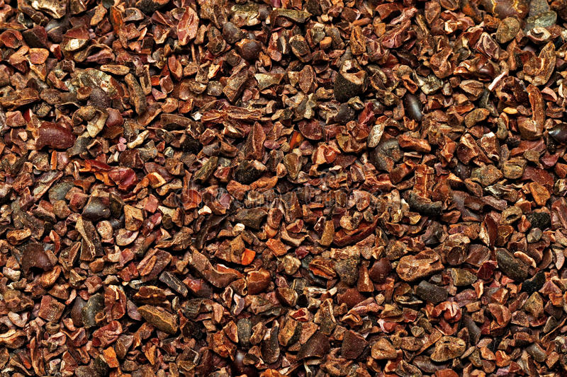 Ruwe cacao royalty-vrije stock foto