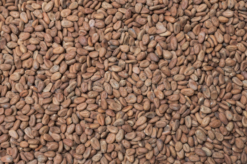 Ruwe cacaoachtergrond stock fotografie
