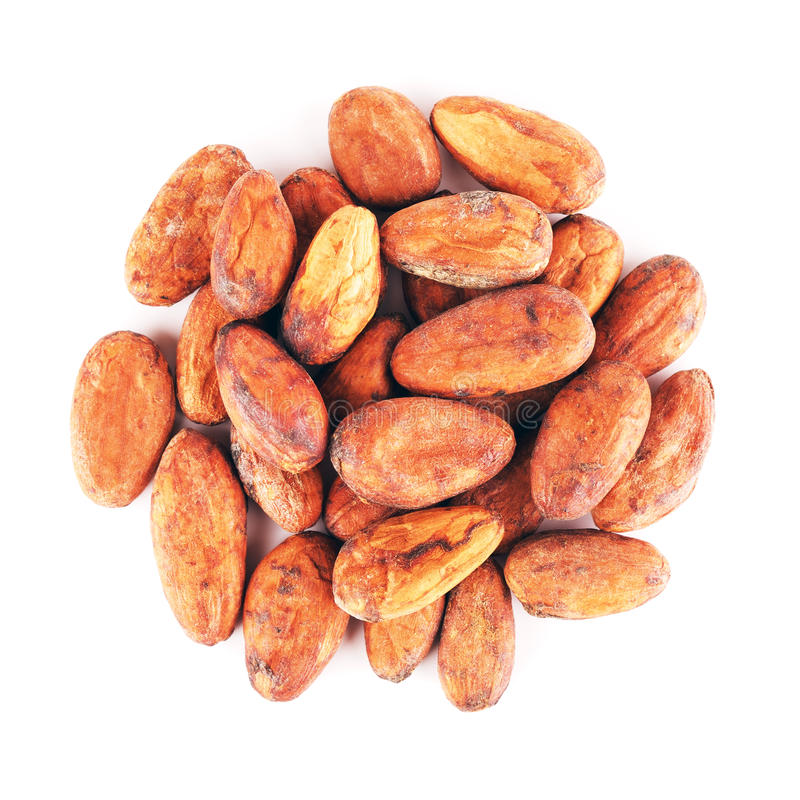 Ruwe cacaobonen stock afbeelding
