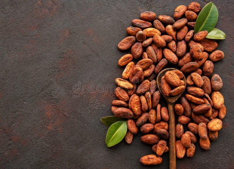 Ruwe cacaobonen royalty-vrije stock afbeelding