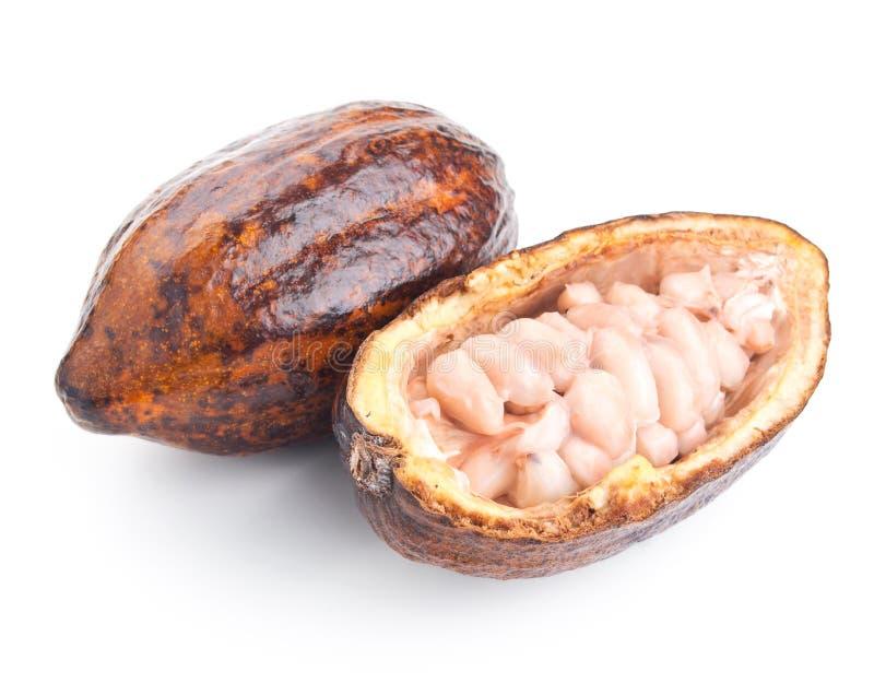 Ruwe cacaopeul en bonen op een wit royalty-vrije stock afbeelding