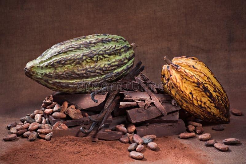 Ruwe Chocolade stock foto