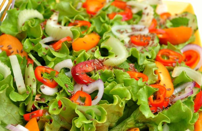 Ruwe, de lentesalade met kleurrijke groenten stock afbeelding