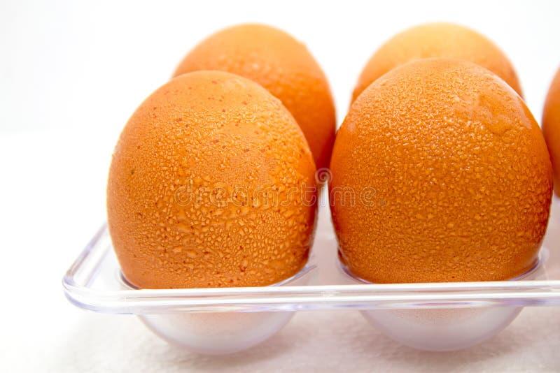 Ruwe eieren en dalingen in plastic pakketten op een witte achtergrond die enkel uit de ijskast wordt genomen om ontbijt voor iede stock foto