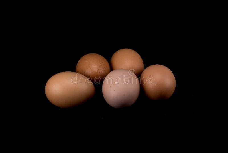Ruwe eieren op witte achtergrond royalty-vrije stock afbeeldingen