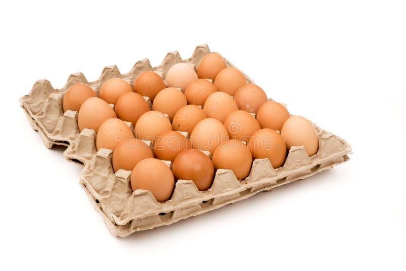 ruwe eieren in verpakking op witte achtergrond stock afbeeldingen