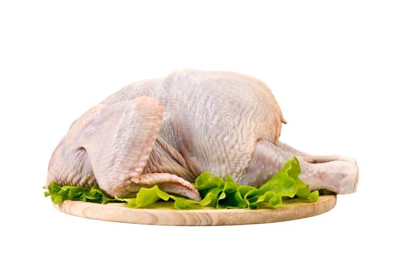 Ruwe gehele kip stock afbeelding