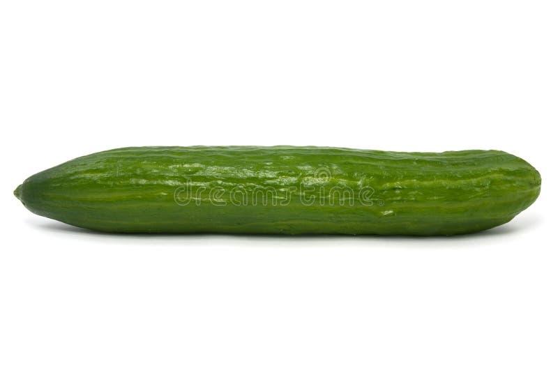 Ruwe groene komkommer royalty-vrije stock afbeelding