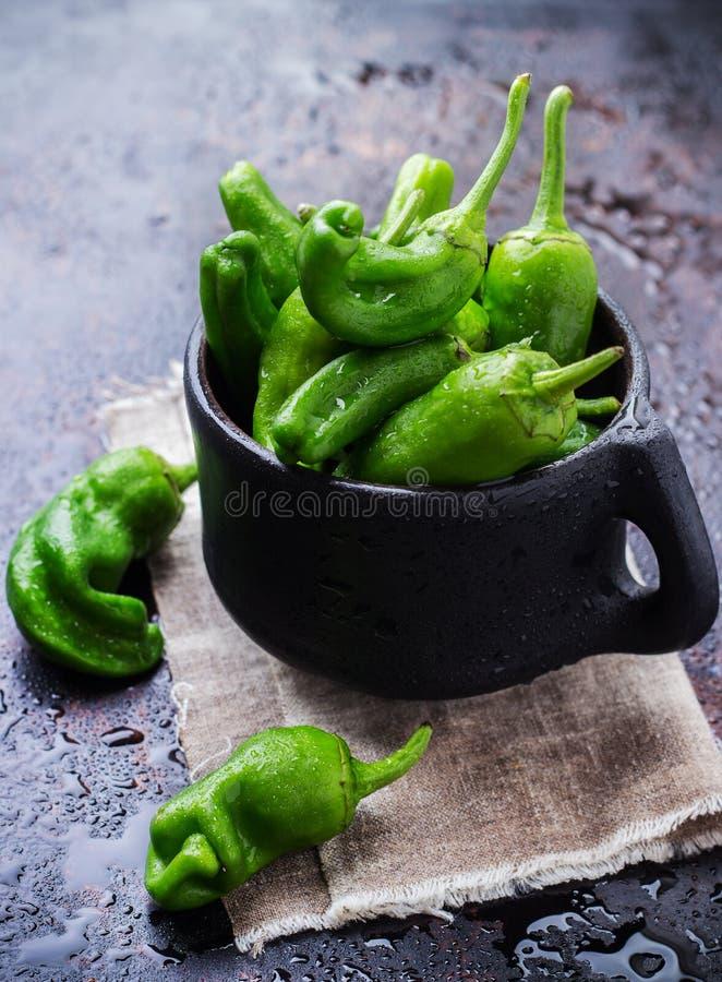 Ruwe groene paprika'sjalapeno pimientos DE padron traditionele Spaanse tapas royalty-vrije stock foto