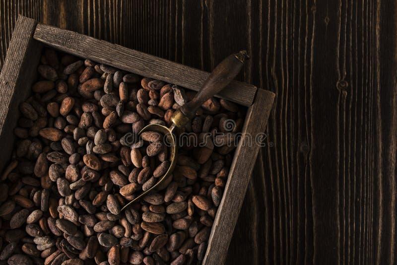 Ruwe houten doos met ruwe cacaobonen royalty-vrije stock afbeeldingen