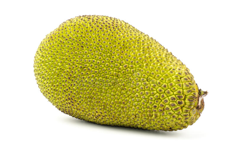 Ruwe jackfruit royalty-vrije stock afbeelding