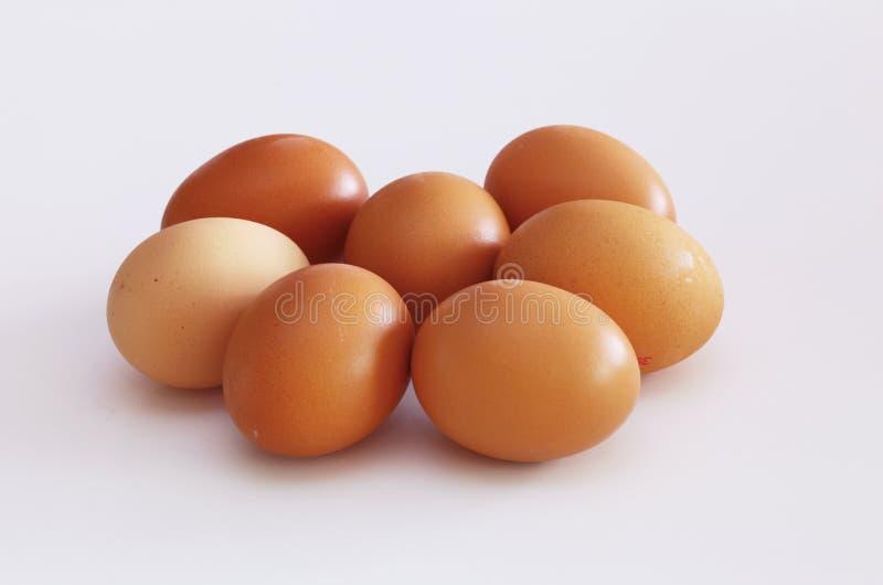 Ruwe kippeneieren stock fotografie