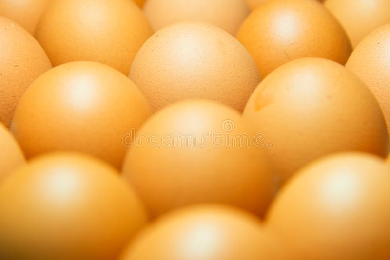 Ruwe kippeneieren in extreme dichte omhooggaande mening royalty-vrije stock foto