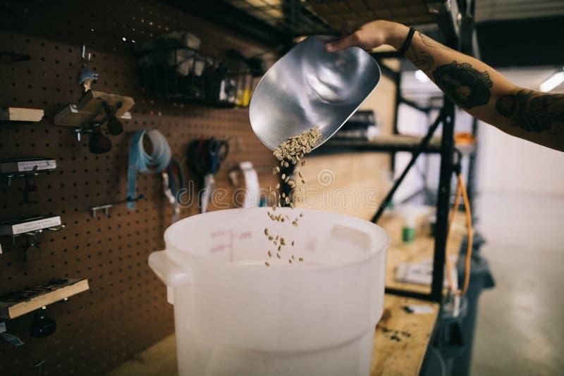 Ruwe koffiebonen in emmer royalty-vrije stock afbeeldingen