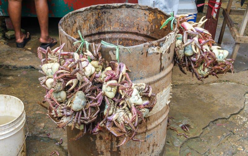 Ruwe krabben bij Centrale markt in Paramaribo, hoofdstad van Suriname stock fotografie
