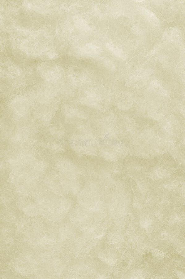 Ruwe Merinos Macro de Close-up Grote Gedetailleerde Witte Textuur van de Schapenwol stock foto's