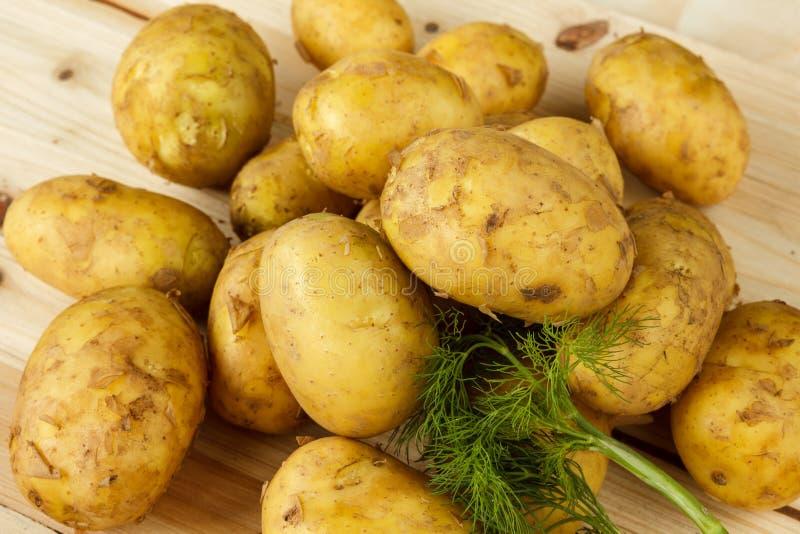 Ruwe nieuwe aardappels en een bos van dille op een houten achtergrond royalty-vrije stock foto