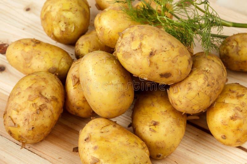 Ruwe nieuwe aardappels en een bos van dille op een houten achtergrond royalty-vrije stock afbeelding