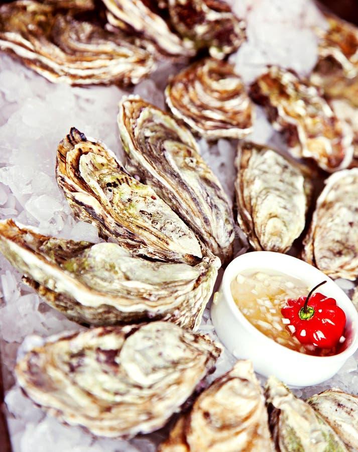 Ruwe oester die in ijs wordt gediend stock foto's