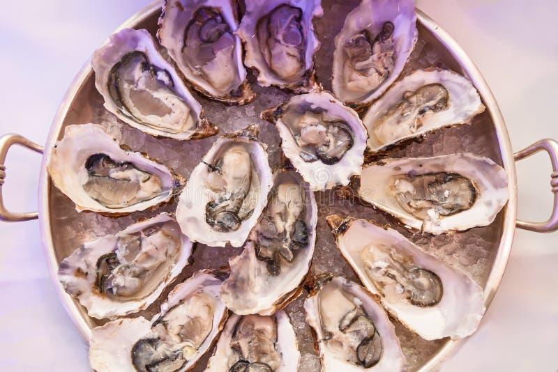 Ruwe oesters, Ruwe organische oesters stock foto