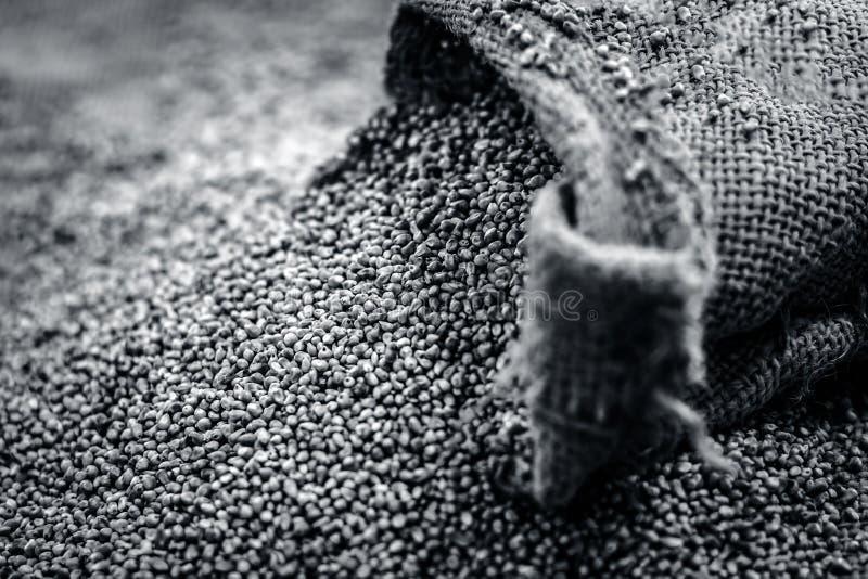Ruwe organische Pennisetum-glaucum, Parelgierst die uit een jutezak komen royalty-vrije stock foto's