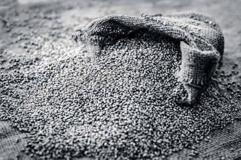 Ruwe organische Pennisetum-glaucum, Parelgierst die uit een jutezak komen stock foto