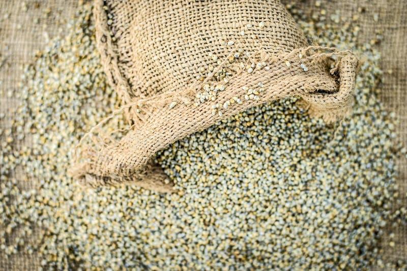 Ruwe organische Pennisetum-glaucum, Parelgierst die uit een jutezak komen Concept Honger royalty-vrije stock foto's