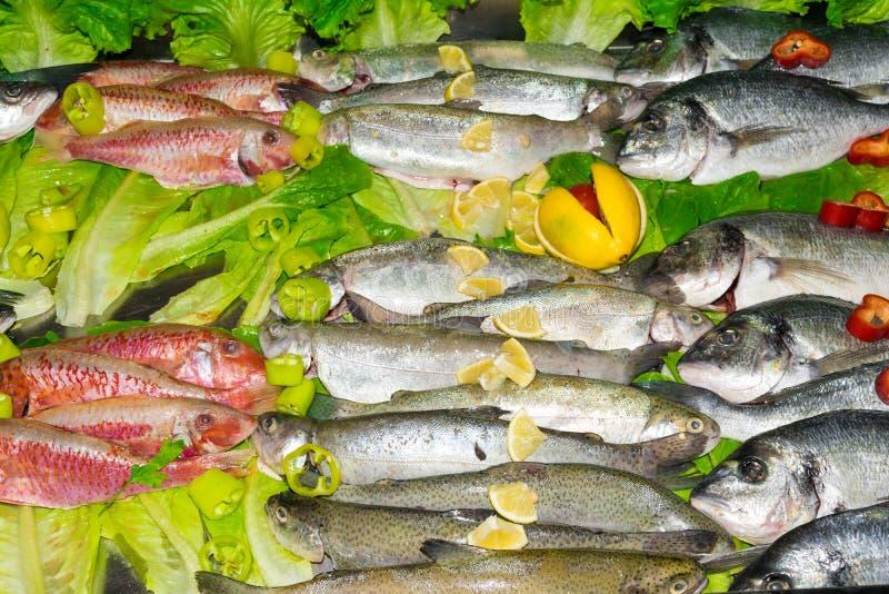 ruwe rode vissen, dorada of overzeese brasem, forel met groenten in markt, gezonde het eten concepten hoogste mening royalty-vrije stock foto