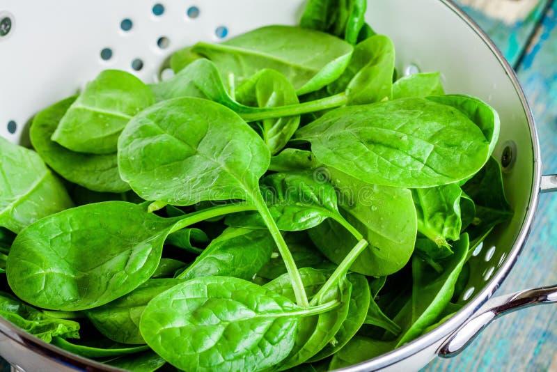 Ruwe verse spinazie in een witte vergietclose-up stock afbeelding