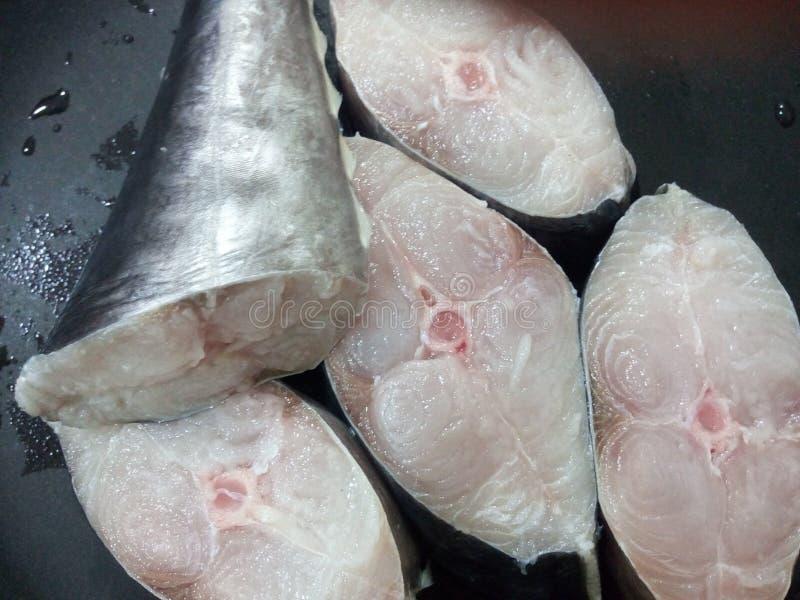 Ruwe Vissen royalty-vrije stock foto