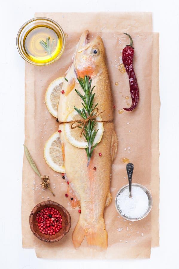 Ruwe vissen gouden forel met kruiden, citroen en kruiden royalty-vrije stock afbeeldingen